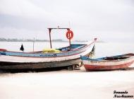 Praia do Forte - Florianópolis - SC - Brasil