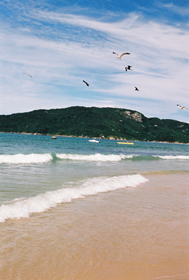 Praia_dos_Ingleses11