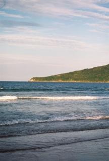 Praia_dos_Ingleses18