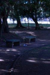 Parque da Redenção 12