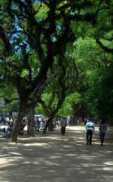 Parque Farroipilha - Redenção