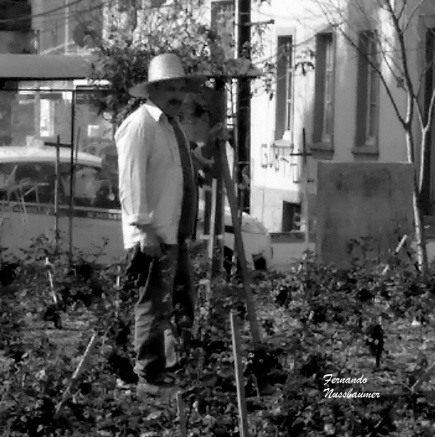 Jardineiro Bento Gonçalves RS Brasil